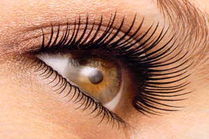 False Eyelashes Fabulous Fashion Accessory
